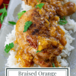 a platter of chicken with orange sauce over rice with chopped parsley