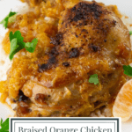A chicken thigh on white rice with an orange sauce and chopped parsley
