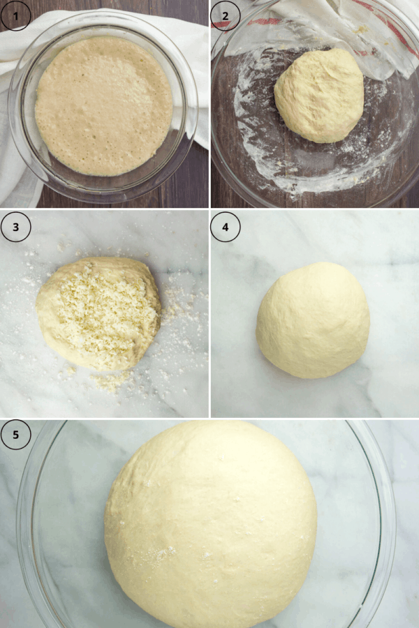 Asiago bread in steps: the yeast proofing, the dough together, cheese added to the dough, the dough ball fully kneaded, then the dough risen.