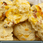 A ham and cheese biscuit cut in half and open in the bowl of biscuits