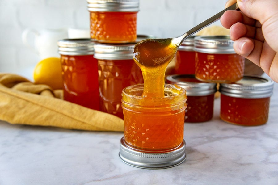 apricot jelly lifted from the jar with a spoon